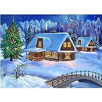 5Dダイヤモンド 刺繍キット 冬の風景 刺しゅうクロスステッチ 絵画 ホームインテリア、30x40cm