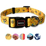 QQPETS Dog Collar Personalized Soft Comfortable Adjustable Puppy Collars for Extra Small Dogs Daily Use Walking (XS, Yellow B