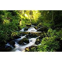 美しい緑の森、滝、川、山 (020) 自然の風景 景観 家の装飾ポスター(33x50cm)