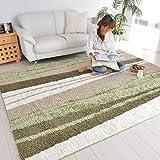 なかね家具 ほっとカーペット対応 防ダニ 抗菌 ラグマット おしゃれ 北欧 日本製 デザインラグ 190x240 グリーン 長方形 597purain
