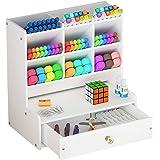 White Desk Organizer, Large Capacity DIY Pen Holder Box, Desktop Stationary Storage Rack for School Home Office (B02)
