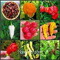 !2018新しいの100pcs /バッグホットチリペッパートウガラシ野菜盆栽を選択する16種類を、ハッピーファーム、#1 QUNDHM:MIX