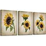 Sunflower Kitchen Decor Simple Life Rustic Wall Decor Vintage Watercolor Sunflower Wall Pictures for Bedroom 3 Pieces Canvas