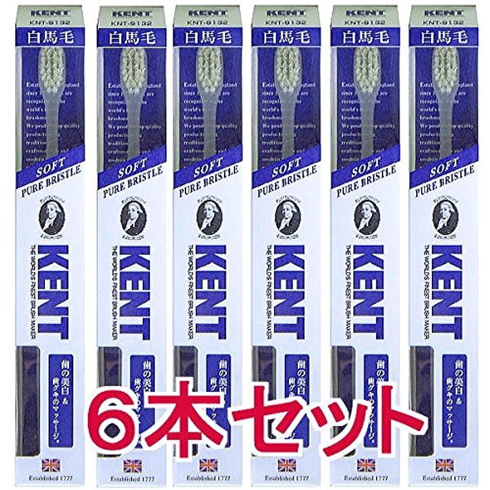 パレード芸術広大な【6本セット】KENT ケント 白馬毛歯ブラシ コンパクトヘッドKNT9132 柔らかめ