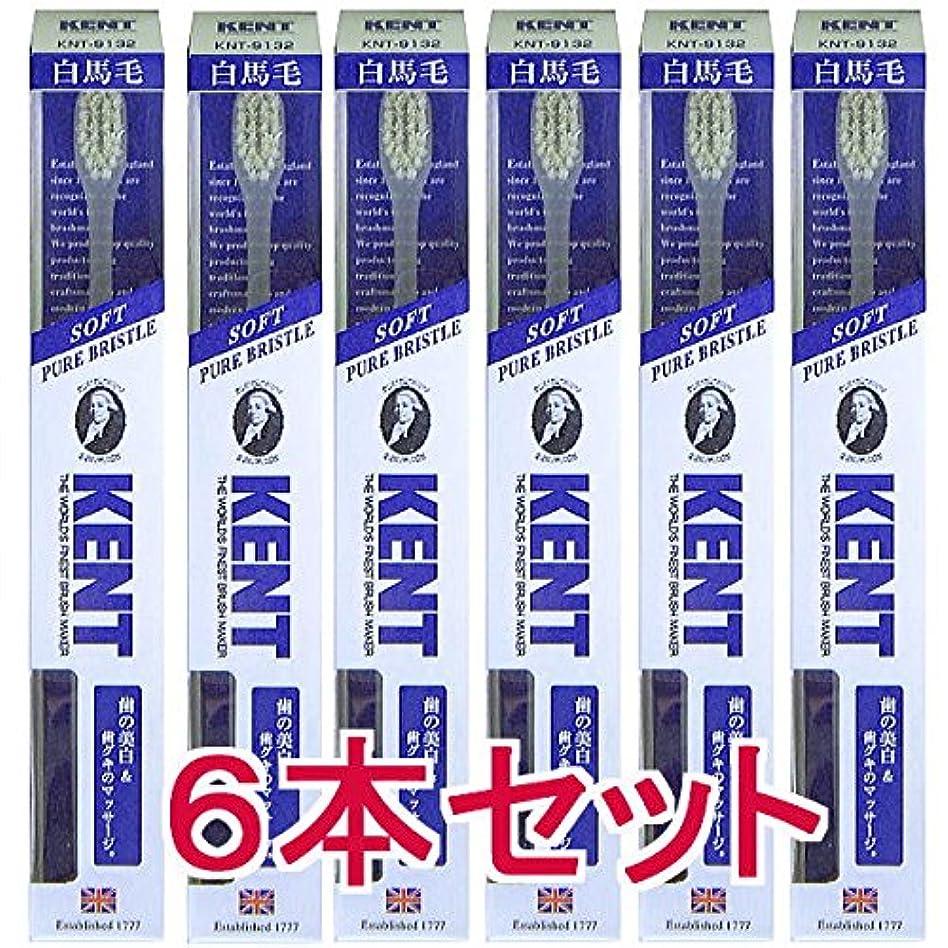 カブ百年航空機【6本セット】KENT ケント 白馬毛歯ブラシ コンパクトヘッドKNT9132 柔らかめ