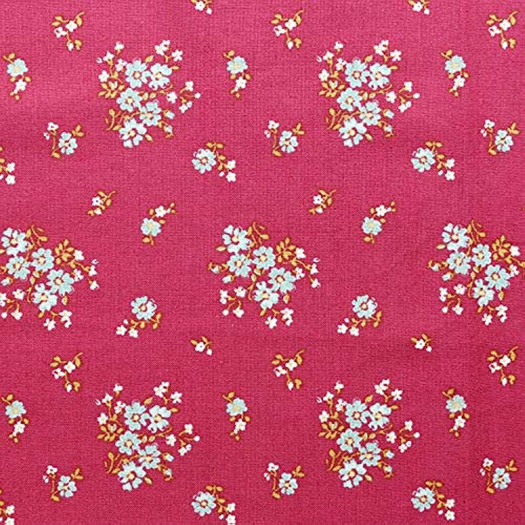 聖歌取るプレミアム輸入生地 FreeSpirit Fabrics フリースピリット 赤地 水色と白の小花 USAコットン マルチカラー 巾約110cm×50cmカットクロス PWSA-007-DUSKY-50