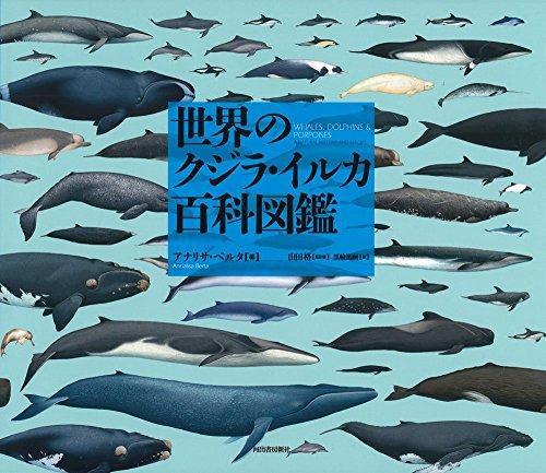 世界のクジラ・イルカ百科図鑑