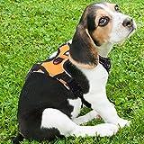 Rabbitgoo 犬 ハーネス 小型犬5-9KG 胴輪 ソフト 首輪 リード 簡単着脱 調節可能 歩行補助 引っ張り防止 咳き込み軽減 散歩 出かけ用 反射材 ハンドル付き 安全 通気 (オレンジ)