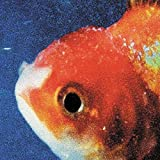BIG FISH THEORY [CD]