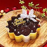 天使のおくりもの クリスマスケーキ2018 (星空のショコラ5号サイズ)