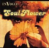 Soul Flower ユーチューブ 音楽 試聴