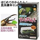 マルカン はじめてのかんたん昆虫標本セット