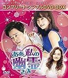 ああ、私の幽霊さま<コンプリート・シンプルDVD-BOX5,000円シリーズ>【期間...[DVD]