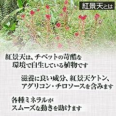 紅景天粉末[100g]天然ピュア原料(無添加) 健康食品(コウケイテン,こうけいてん)