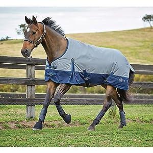 Saxon 600d標準Medium Blanket