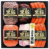 日本ハム 九州産黒豚肉使用 ハム・焼豚&ソーセージ6点詰合せ