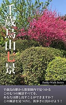[Team Paddy]の千歳烏山七景 〜「Paddyウォーク」シリーズ〜