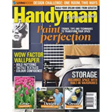 Handyman, Paint Perfection: Trends, Tips, Techniques