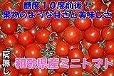 和歌山産 完熟ミニトマト 1kg 房なし