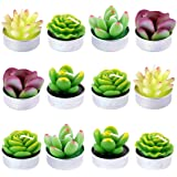 Swpeet 12Pcs Decorative Succulent Cactus Tealight Candles Kit, Cute Smokeless Succulent Plants Perfect for Candles Festival W