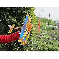 Techinal子供アウトドア再生グライダーFlying Plane飛行機DIYアセンブリモデル – ゴムバンドPowered (カラー:ランダム配信)