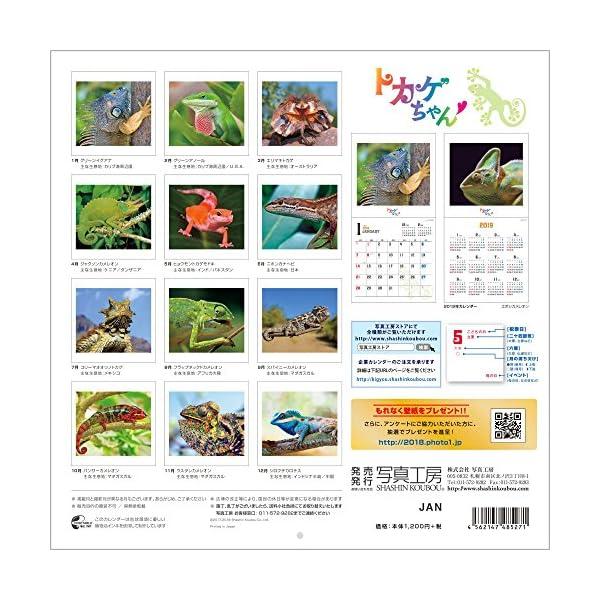 トカゲちゃん 2018年 カレンダー 壁掛け...の紹介画像17