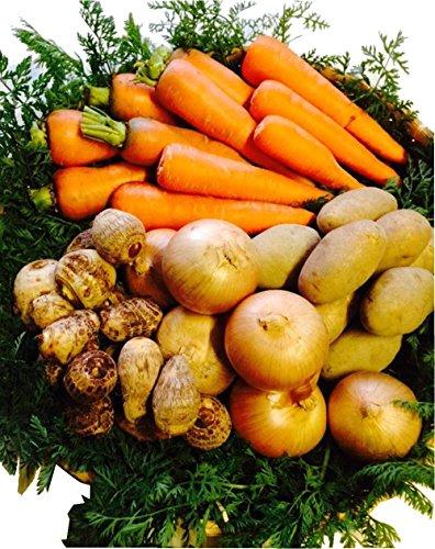 熊本産 冷凍カット野菜 1.4キロ 国産 ミックス フリーズドライ ジュース 時短料理