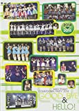 Hello!Project COUNTDOWN PARTY 2014 〜 GOOD BYE & HELLO!〜 [DVD]