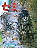 ドキドキいっぱい!虫のくらし写真館〈6〉セミ