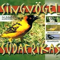 Song Birds of Southern Af