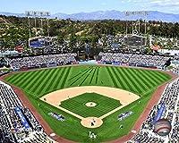 MLB ロサンゼルス・ドジャース 2015 スタジアムフォト (サイズ: 8インチ x 10インチ)