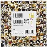 シーオーツー 猫めくり 2020年 カレンダー リフィル 日めくり CK-C20-02 画像