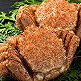 毛ガニ 北海道産 約800g×2尾 (計1.6kg前後) 特大 ボイル 冷凍 極上堅蟹 毛蟹