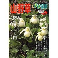 山野草とミニ盆栽 2006年 05月号 [雑誌]