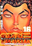 餓狼伝(16) (イブニングKC)