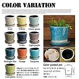 Color glazed pot カラーグレーズドポット DULTON 全10色 アイボリー