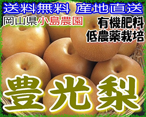 産地直送 低農薬 有機肥料栽培 岡山産 豊水梨 約4キロ 3L サイズ 大玉8〜9玉 産地箱入 贈答向け品質