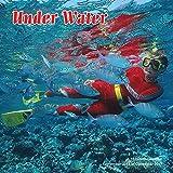 Under Water 2017 Wall Calendar [並行輸入品]