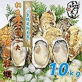 殻付き 牡蠣 10kg【冷蔵便】兵庫県 相生海域 漁師 が販売、とれたて新鮮で す。生食用 かき