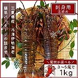 三重県産 伊勢海老詰合せ 4尾で約1kg 刺身用瞬間冷凍 伊勢エビ 尾数選べます