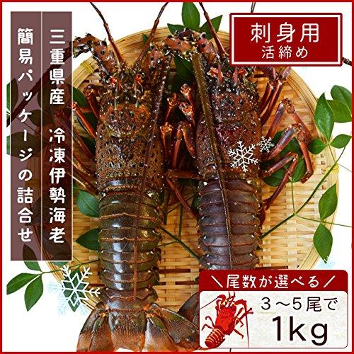 三重県産 伊勢海老 詰合せ 5尾で約1kg 刺身用 瞬間 冷凍 伊勢エビ