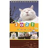 学研ステイフル 2021年 かご猫 カレンダー 卓上 M09093