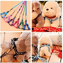 1x Small Pet Puppy Cat Adjustable Nylon Harness with Lead leash Traction Rope