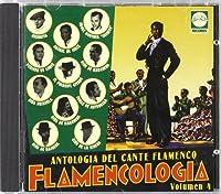 Vol. 4-Flamencologia