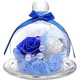 ティートサイト プリザーブドフラワー フラワーアレンジ ラッピング済み ガラスポット入り 2輪 (バラ 白×青)