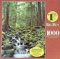 ビッグベン1000pc。puzzle-olympic国立公園、wa