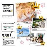 カレンダー2017 週めくりカレンダー なごみ猫 (ヤマケイカレンダー2017) 画像