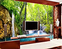 Wapel Beibehang カスタマイズされた大規模な 3 次元の壁紙 HD の滝風景ライブルームテレビウォール壁紙の paisaje 壁紙 3 d の Papel tapiz 絹の布 250x175CM