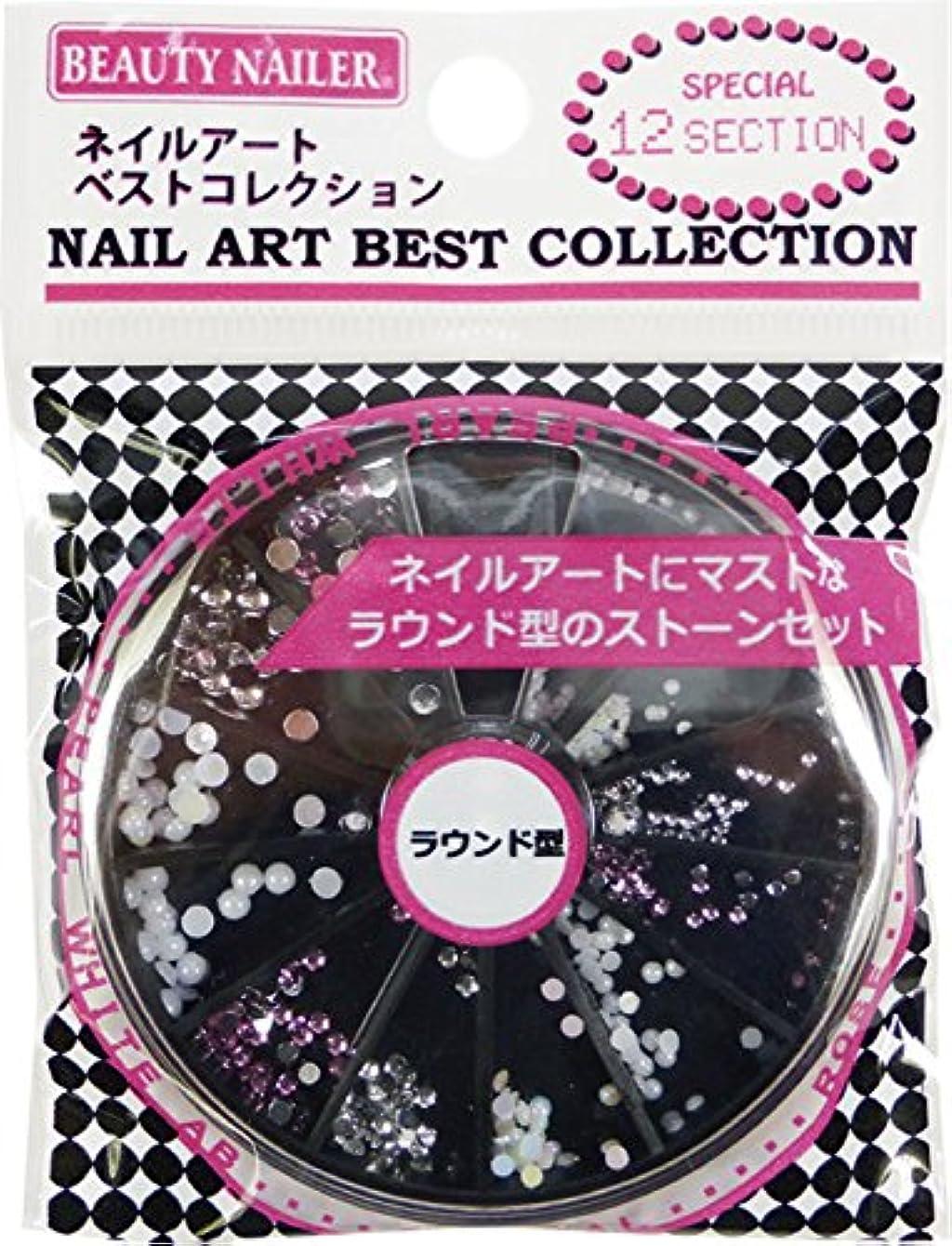 不一致感度時代遅れビューティーネイラー ネイルアートベストコレクション NAA-45