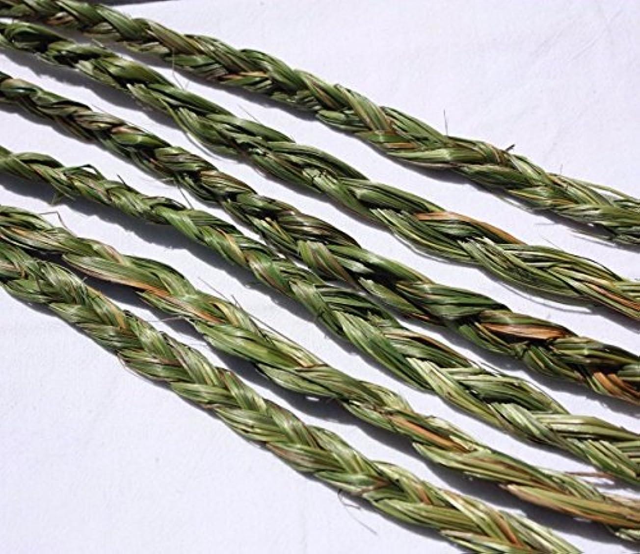 シュリンク嫌がらせ不愉快オーラVariety Braided Sweetgrass for Smudging – 20